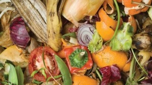 Food Waste Sorting